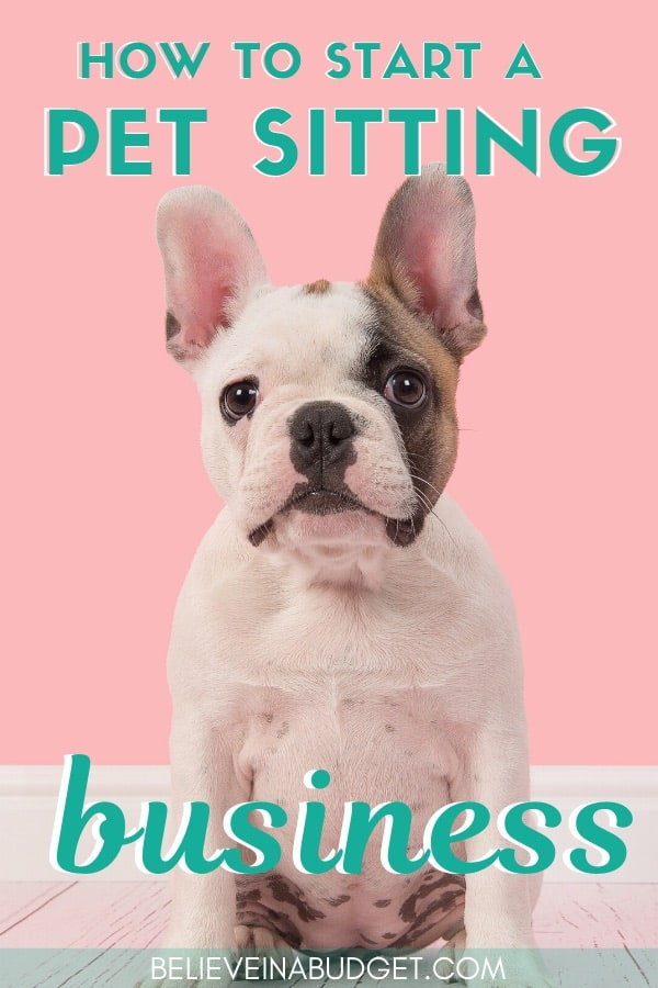 Learn how to start a pet sitting business with these smart tips. Includes income expectations and possible expenses when starting a pet sitting business. #sidehustle #extraincome #dogs