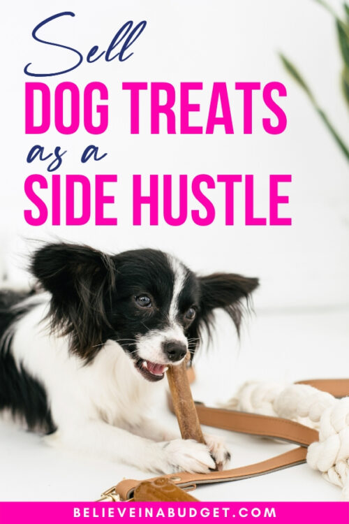 Sell Dog Treats as a Side Hustle